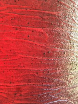 Fruit leather